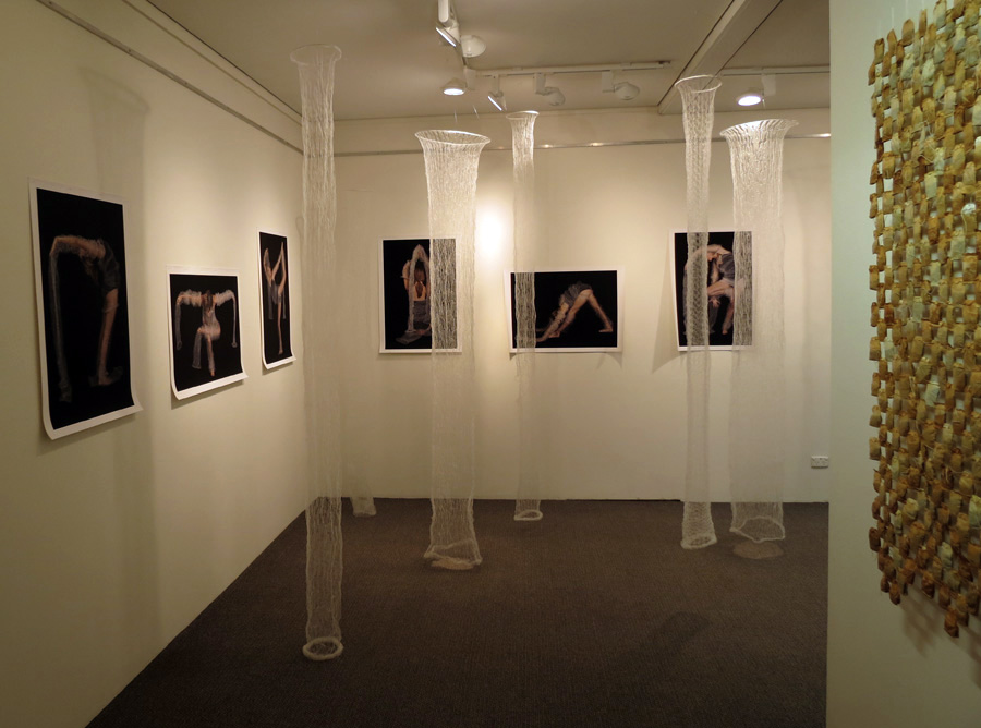 18.  Meditation on Form  installation by Anne Farren tubular knitted monofilament, photographic images on canvas (photographer Richard Jefferson, model Caitlin Farren) $5385