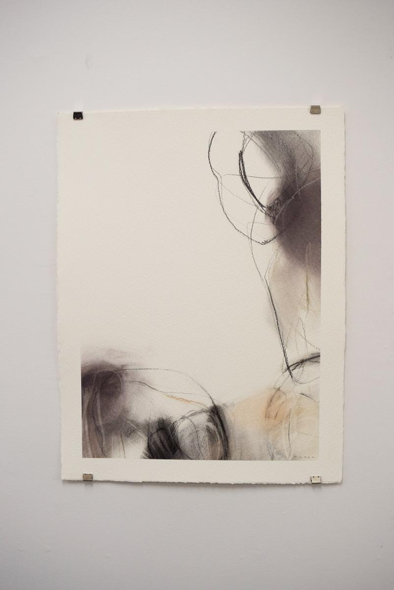 Landscape Conversation, Gayle Mason , mixed media on paper,A1 unframed,$500