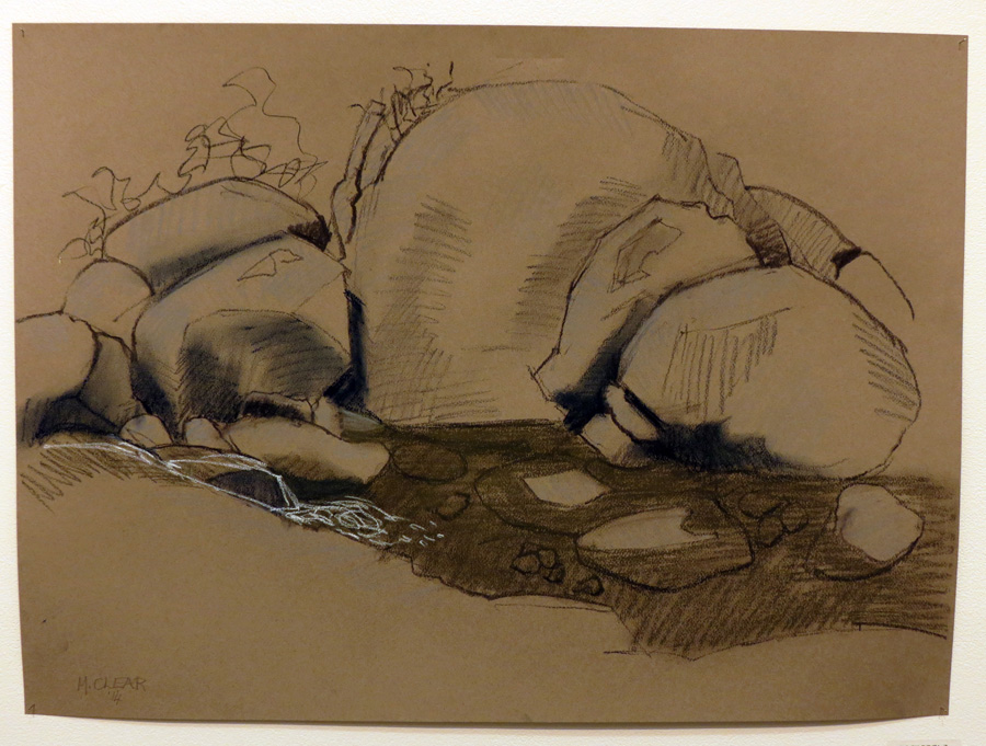 15.Madeleine Clear, Rock Pool 2 , charcoal, pastel on Canson paper (unframed), 2014,$660