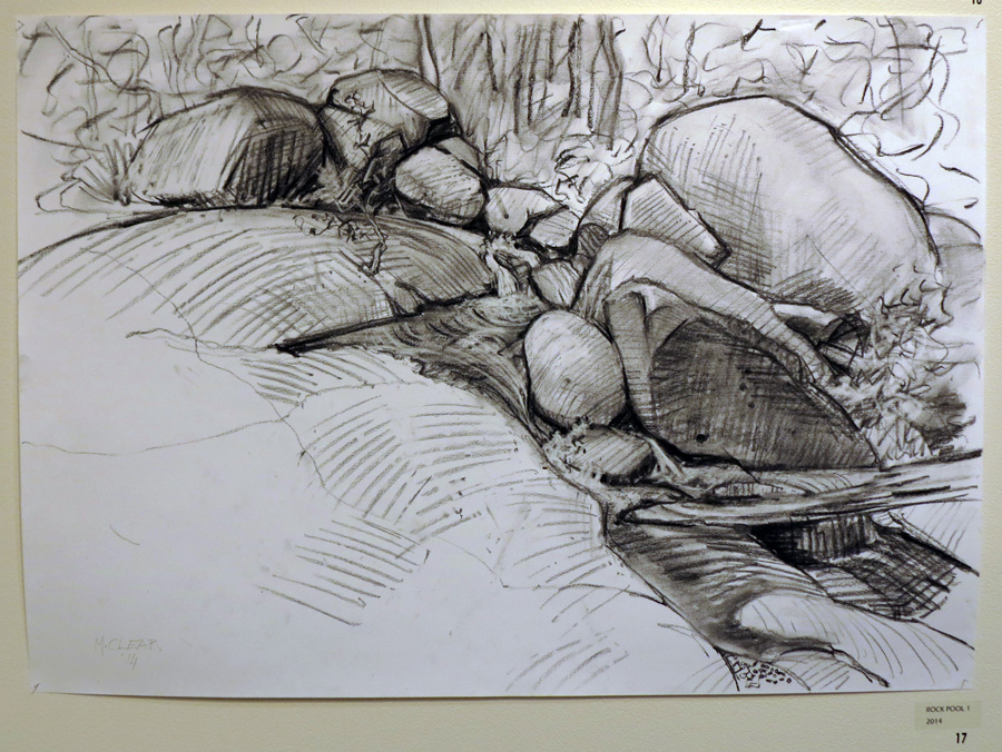 17. Madeleine Clear,  Rock Pool 1 , charcoal on paper (unframed), 2014, $660