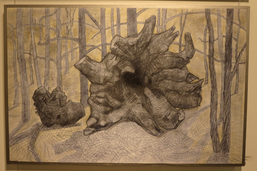 22. Madeleine Clear,  Fallen 2 , charcoal, acrylic on board, 2013, $990