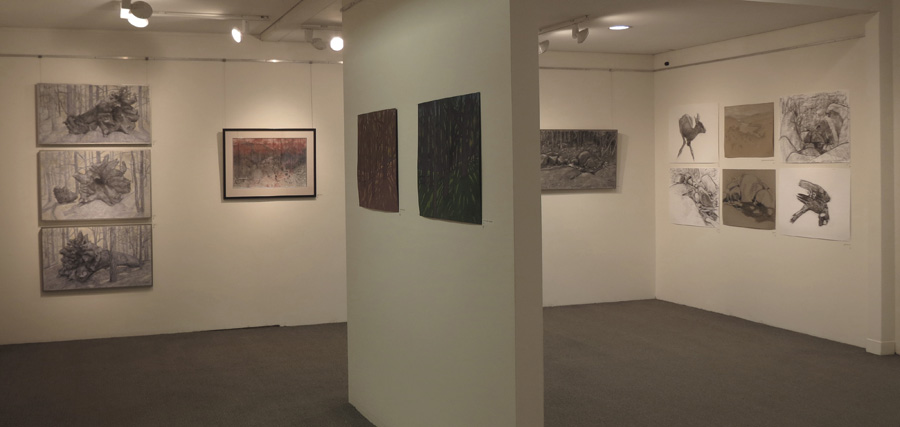 Being Here,  gallery view -central north