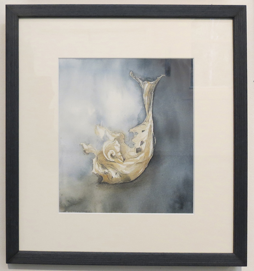 5. 'Seeing Life in Decay', Caroline Lyttle, watercolour and pencil, $430