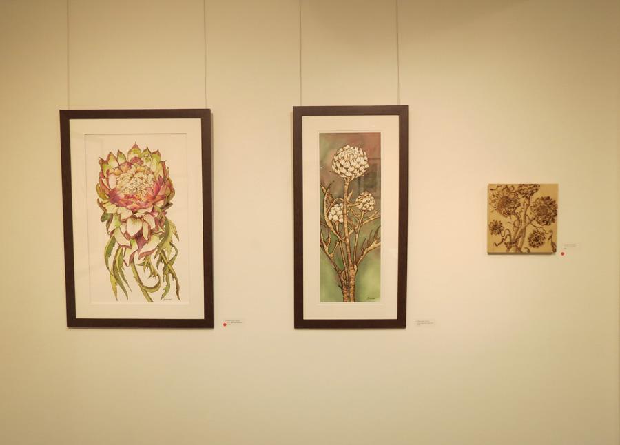 7. 'Artichoke Flower', Sandie Schroder, burnt paper and watercolour, $1,250  6. 'Artichoke Heads', Sandie Schroder, burnt paper and watercolour, $750  5. 'Dried Artichokes', Sandie Schroder, burnt Birchwood panel, $400