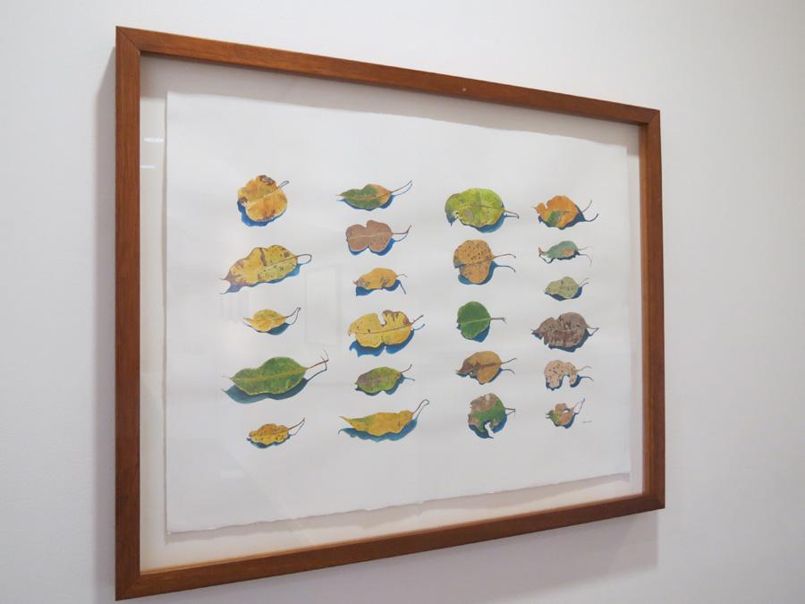 49. 'Leaf Portraits', Sarah Thornton-Smith, watercolour on paper, $920