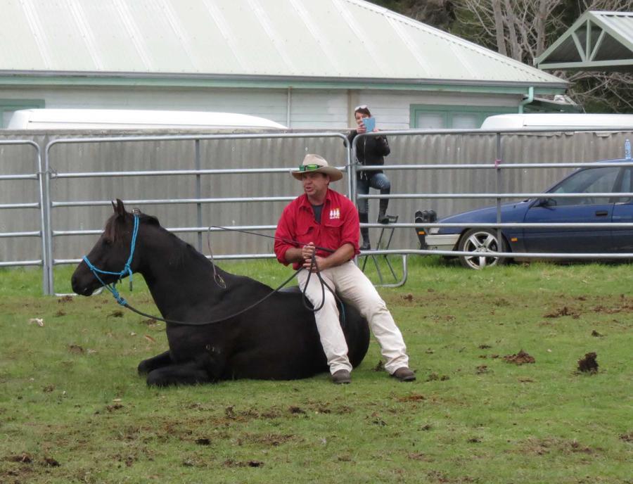 Warren performing tricks with his horse.jpg