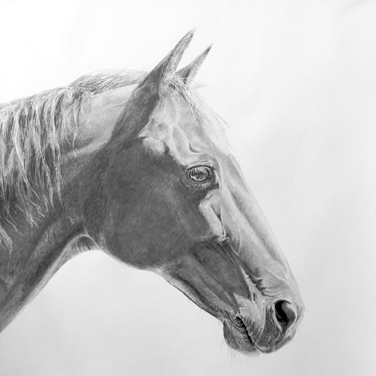 Image: Ross Potter,  Thunder  2017, pencil on paper