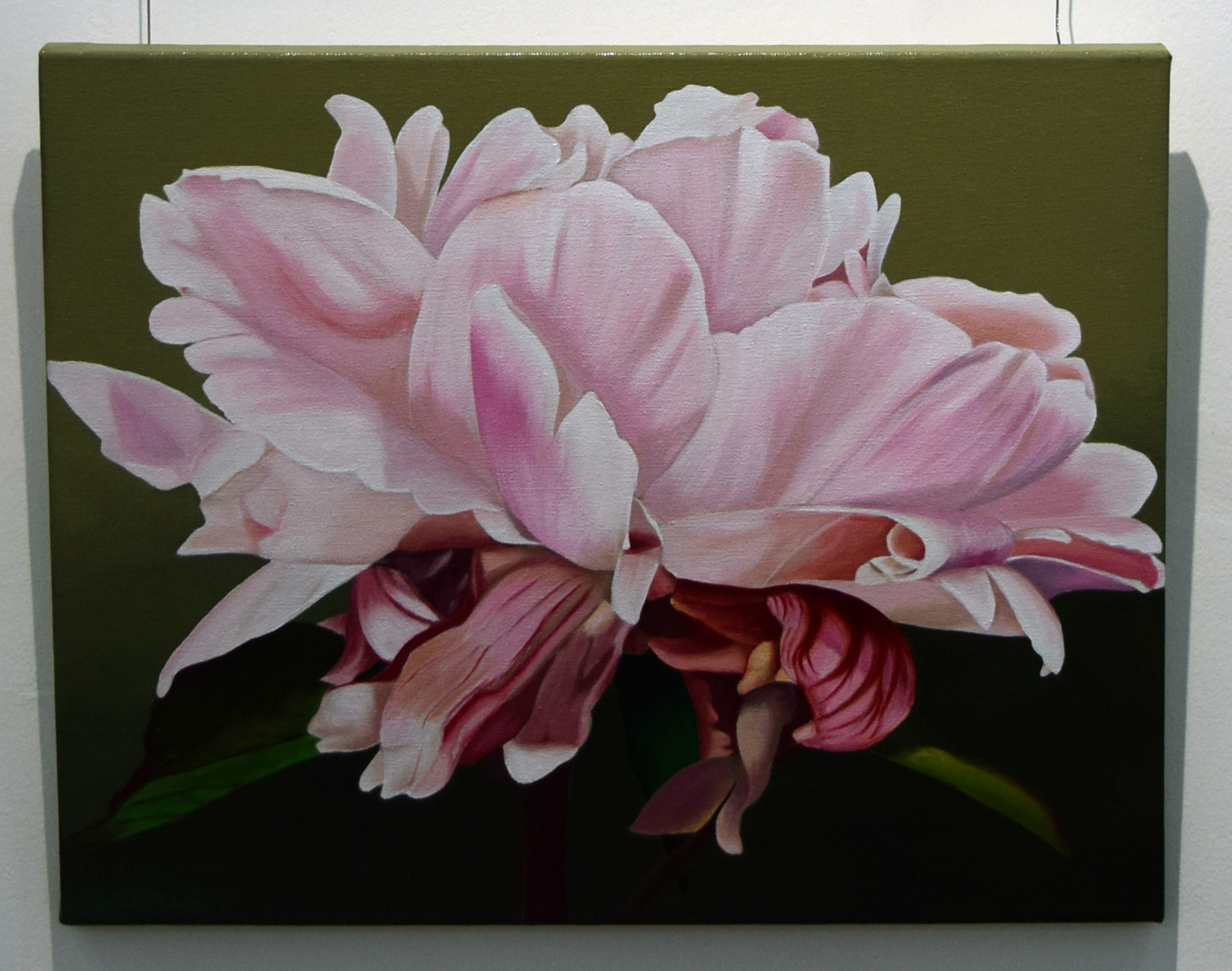 8. Pat Hillard, Peony II, 2018, acrylic on canvas, 50 x 40 cm, $480