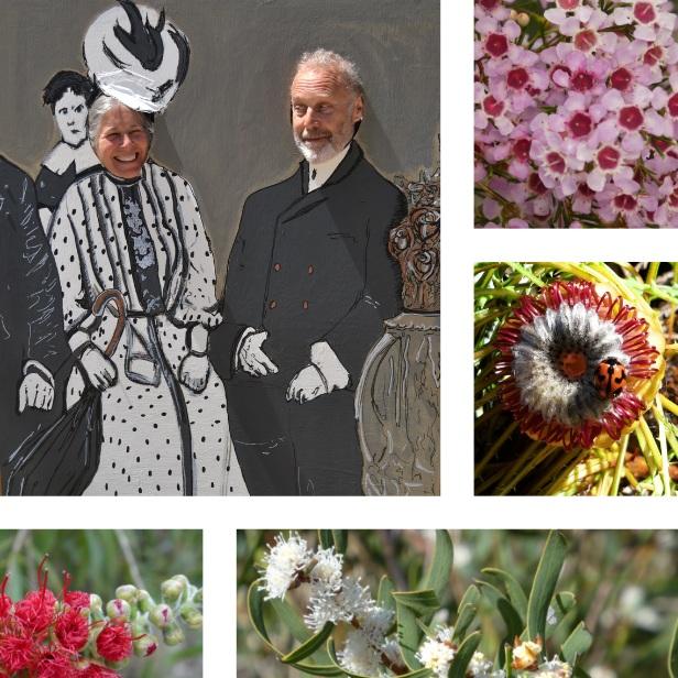 Spring back in time - Take a photo among the flowers with Mundaring & Hills Historical Society's cut out. A range of potted native plants, will also be available for sale.10am - 3pmFREEMundaring Station Master's House