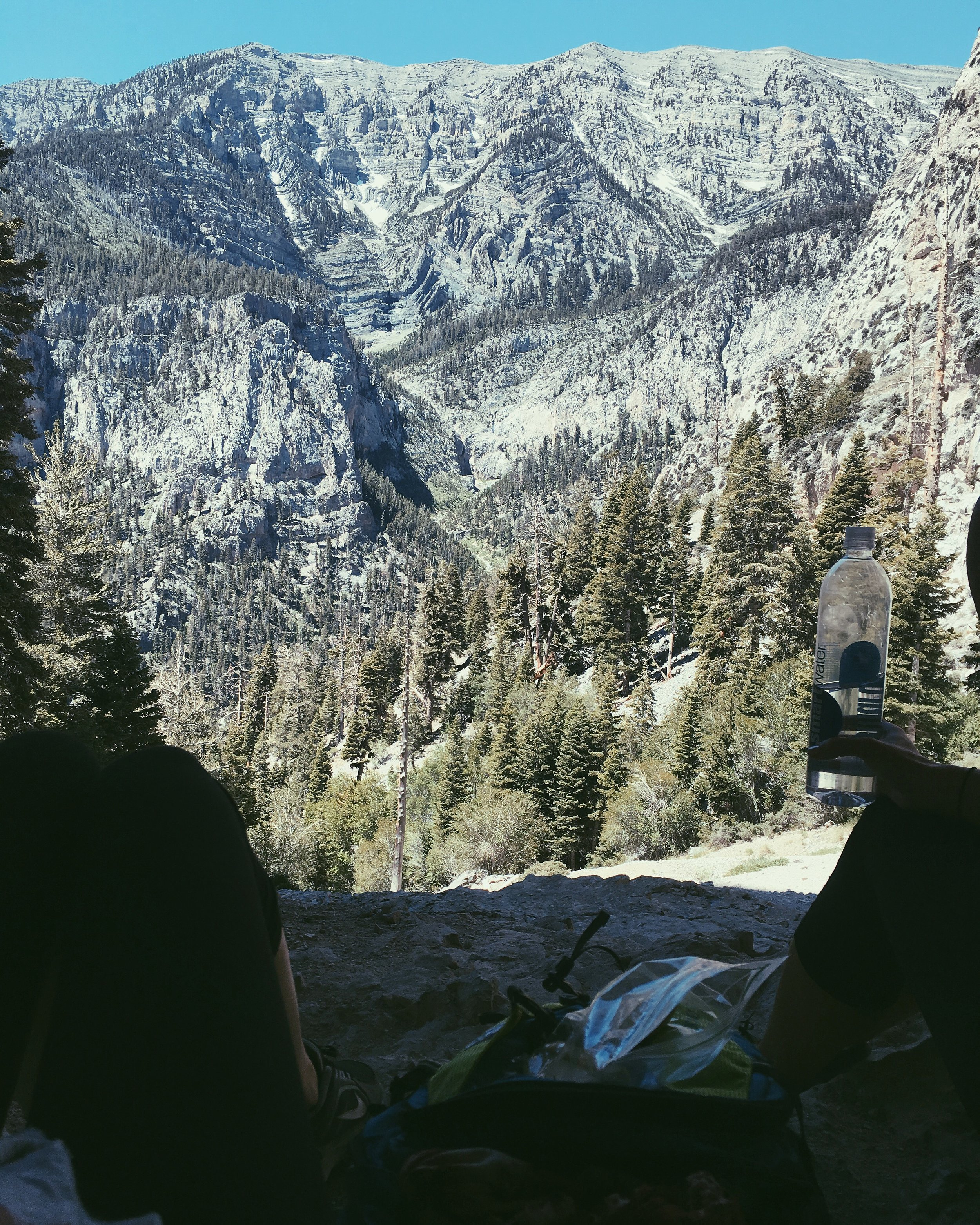 4. Mountain escapes with my college bestie. Mt. Charleston, NV.
