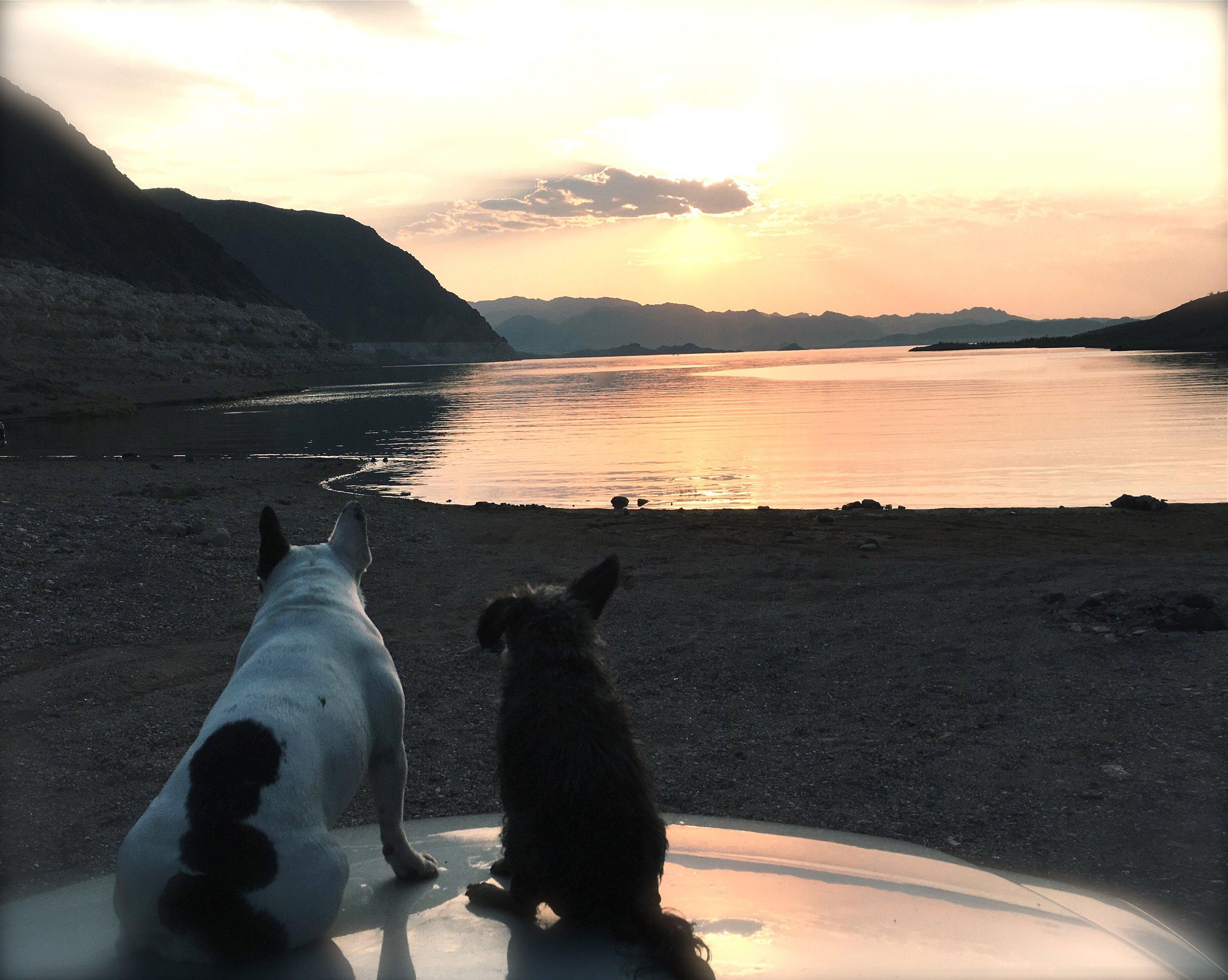 10. when Roman found summer love.. Lake Mede, NV.