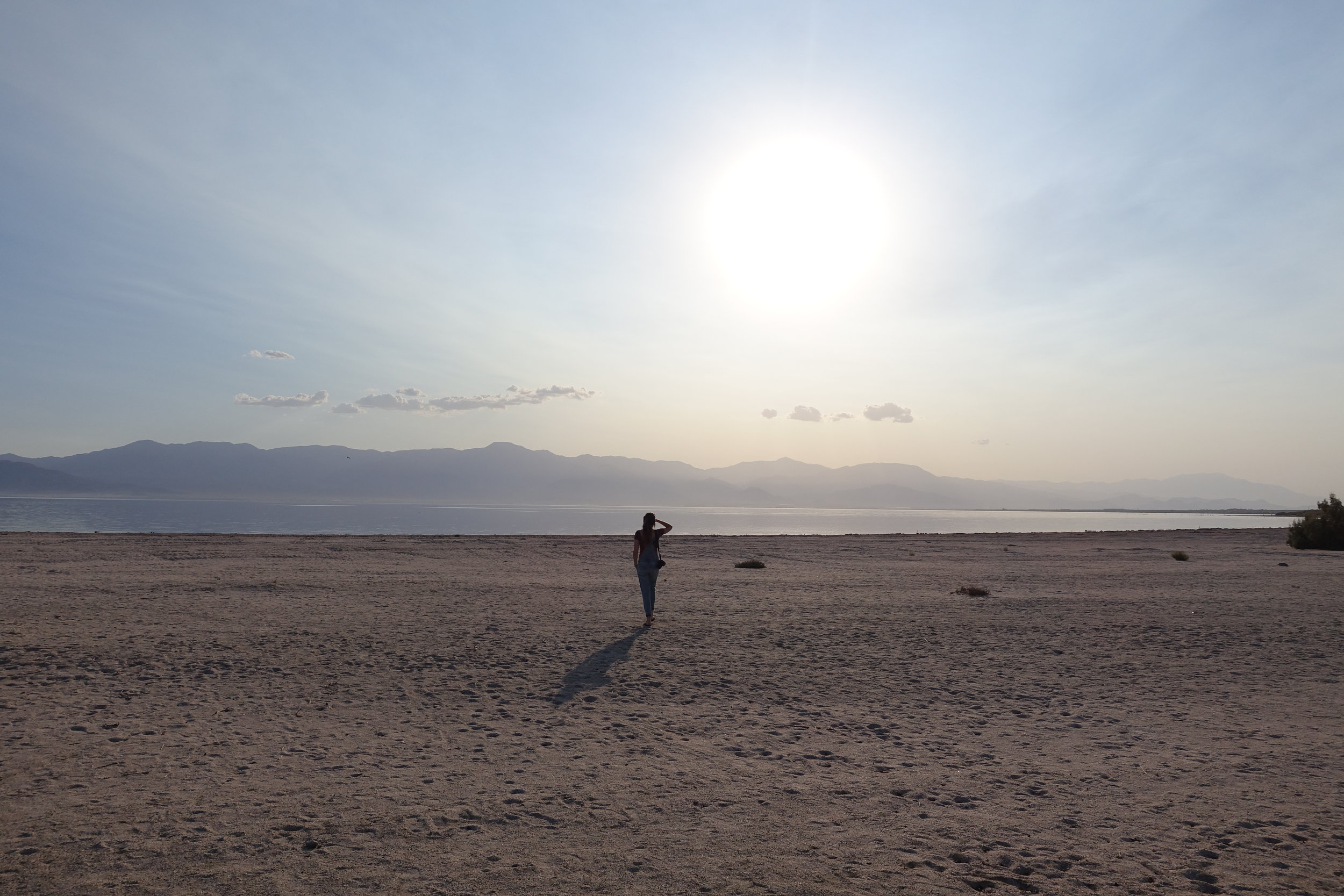 8. the smell of salton sea. probably should not be listed as the best of but definitely one to remember. Salton City, CA.