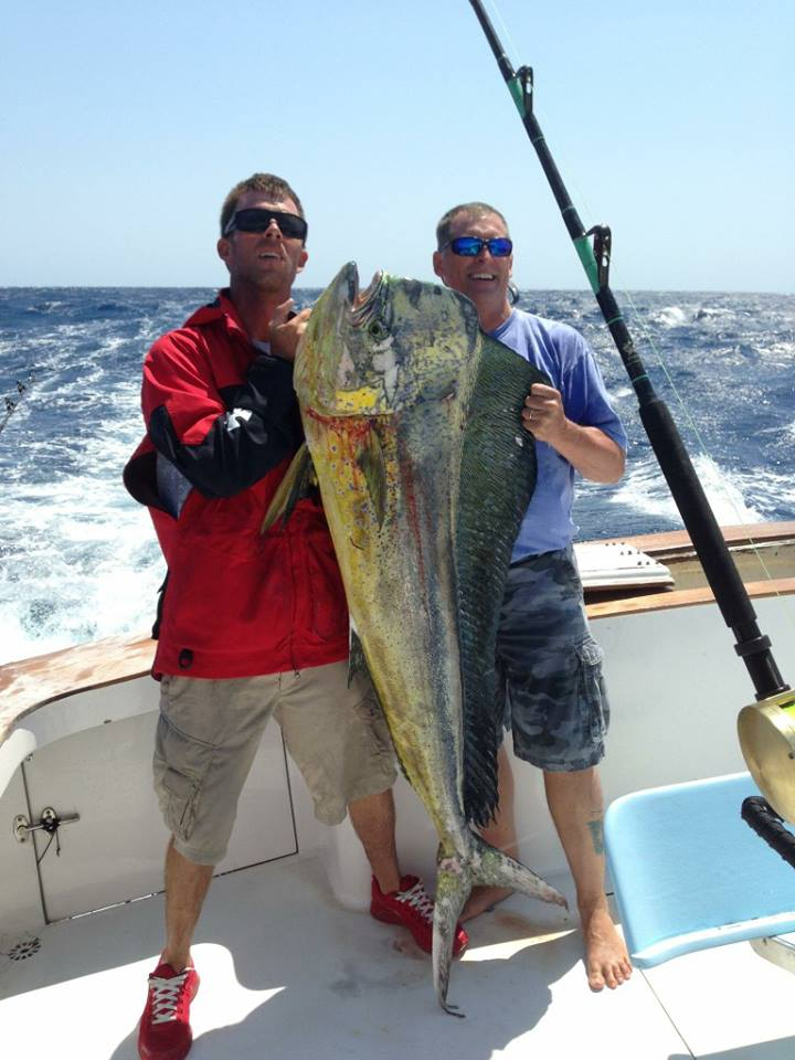 48 lb Citation Bull Dolphin caught during the Hatteras Village Offshore Open.