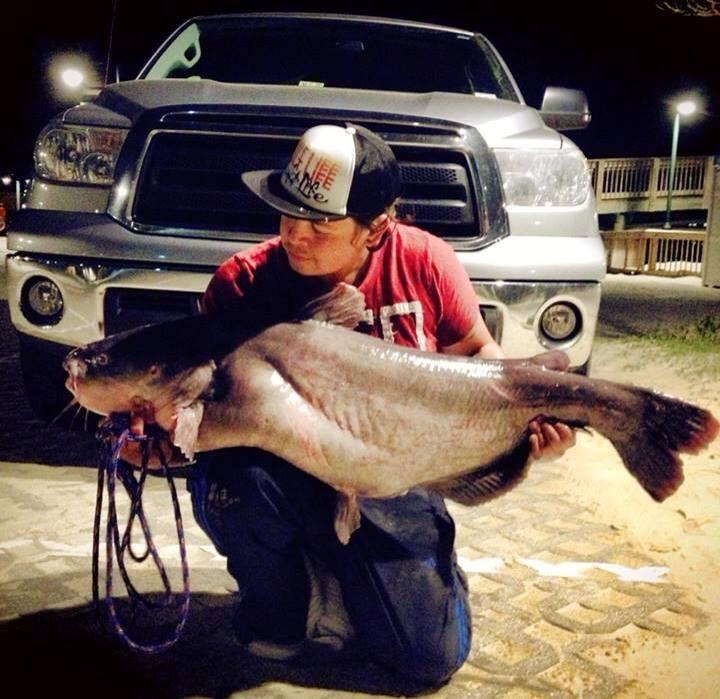 65lb Catfish