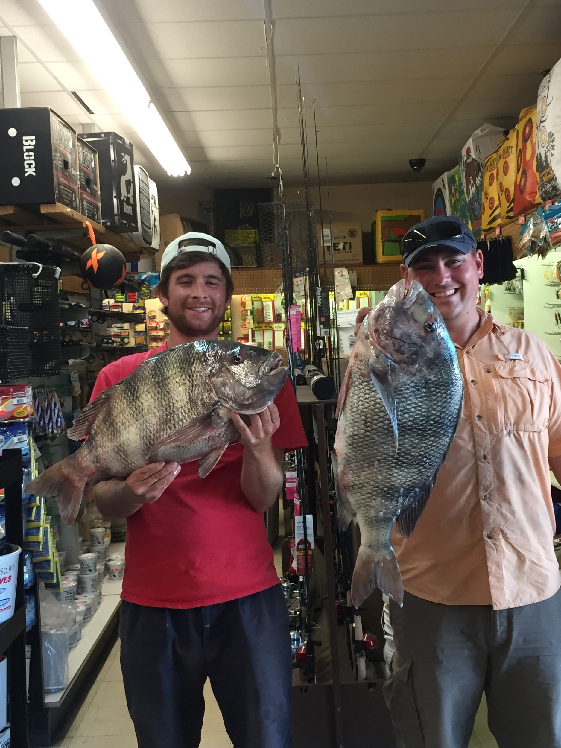 2 sheephead citations caught by Alexander Neal 13lbs 8oz and Dave Leslie 10lbs 4oz in the CBBT. Congrats guys!