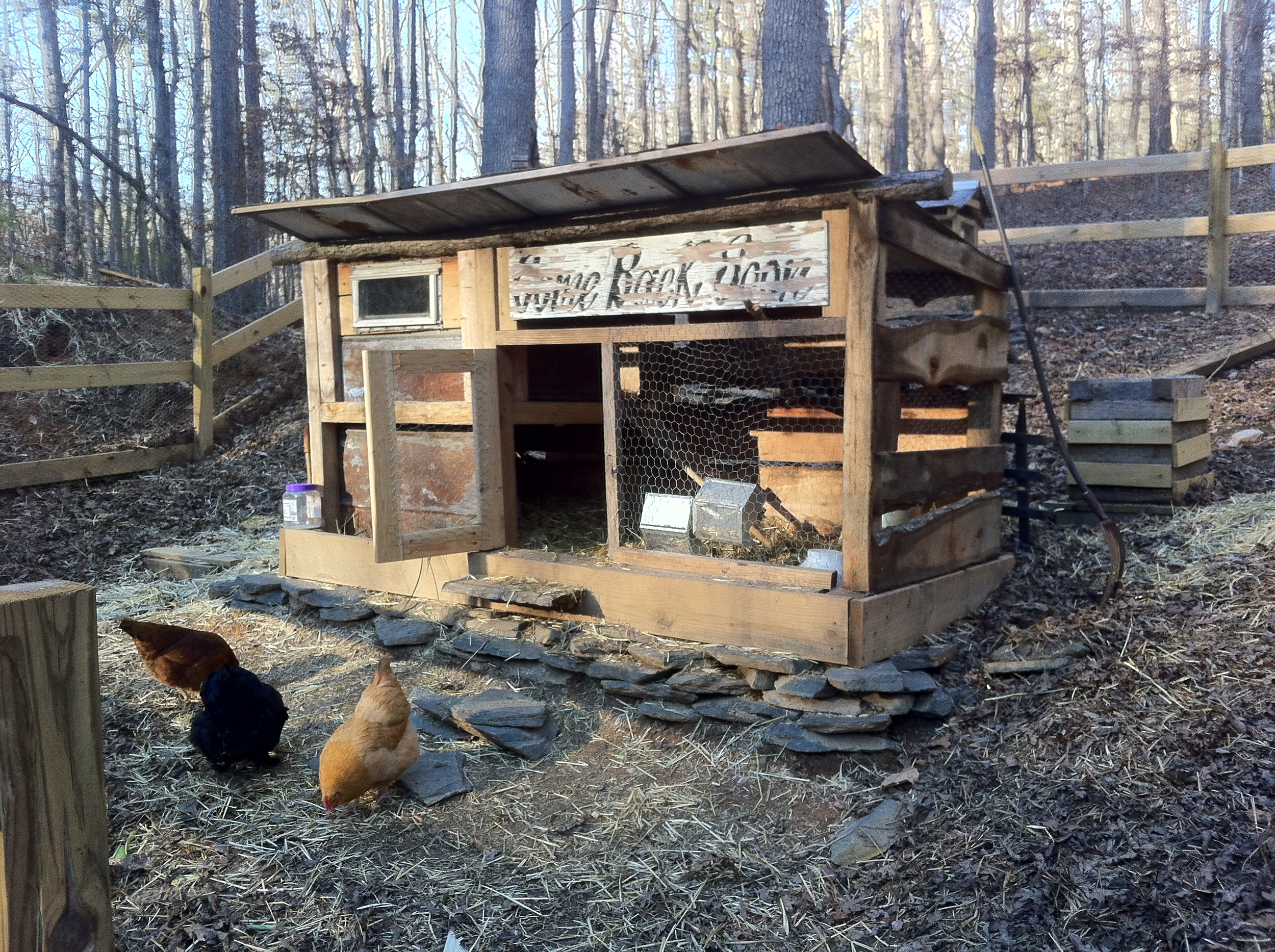 Our girls' home. I made this from some old tin left on our property, some scrap wood I had lying around, remnants from a timber mill, and a decaying sign from a defunct business. Our chickens; Snowy, Laverne, Mildred, and Little Red couldn't be happier!