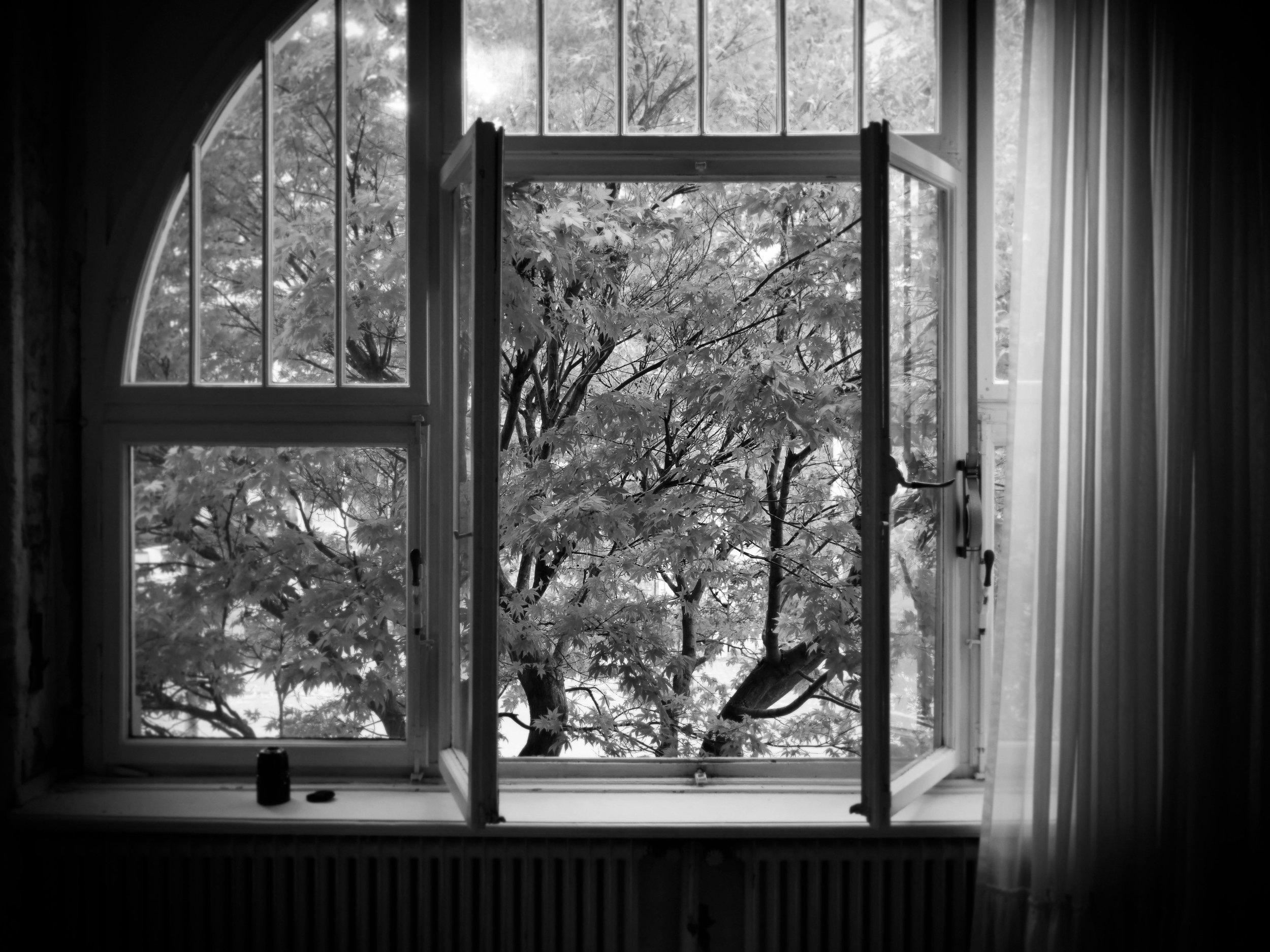 Portraitfotograf in Bonn Fotograf Daniel Hammelstein P1099541_Exp.jpg