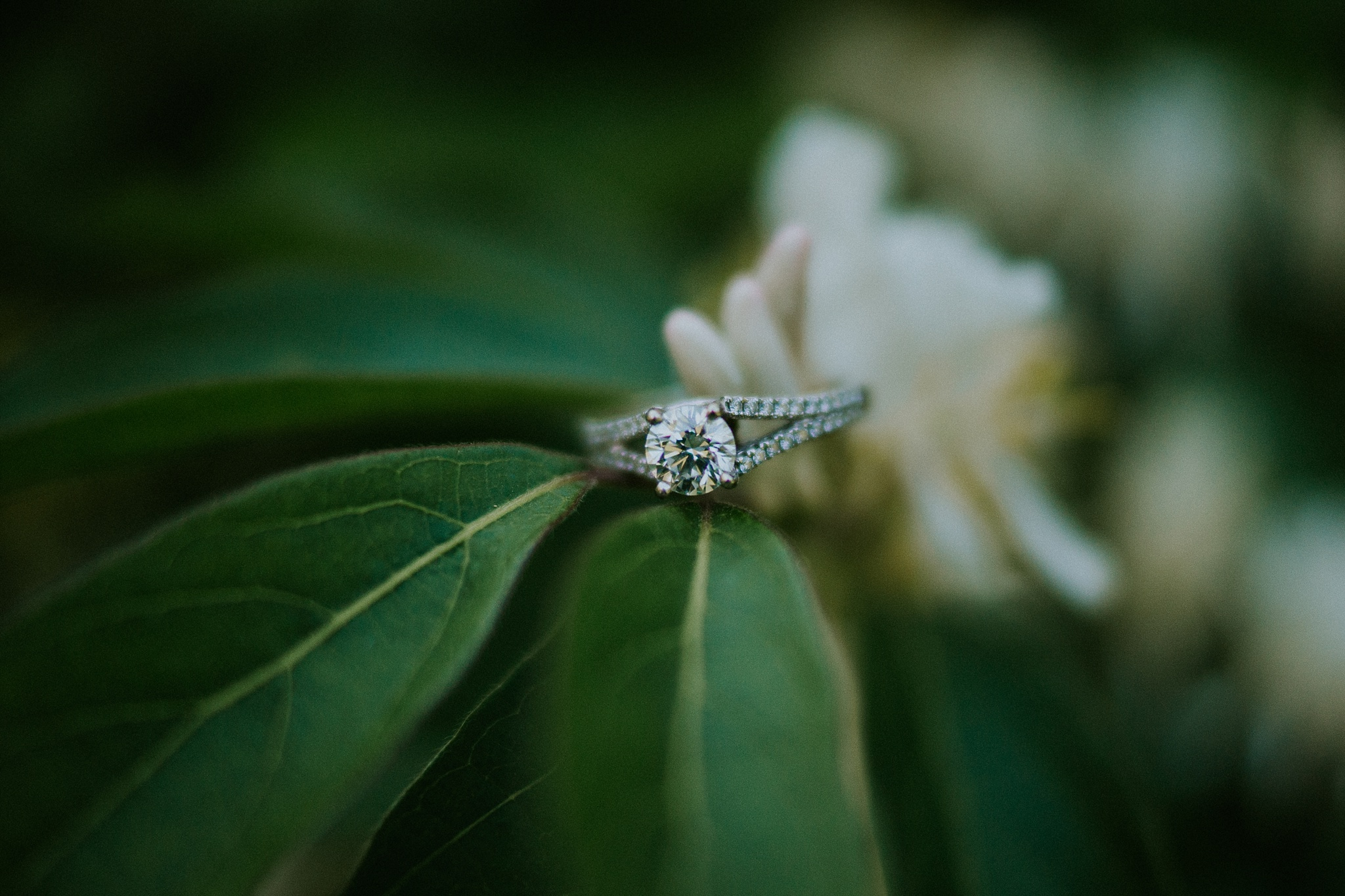 Shelby Chari Photography | South Bend Portrait Photographer | Ring Shot