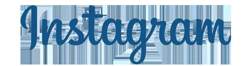 instagram logo-rita-homepage.png