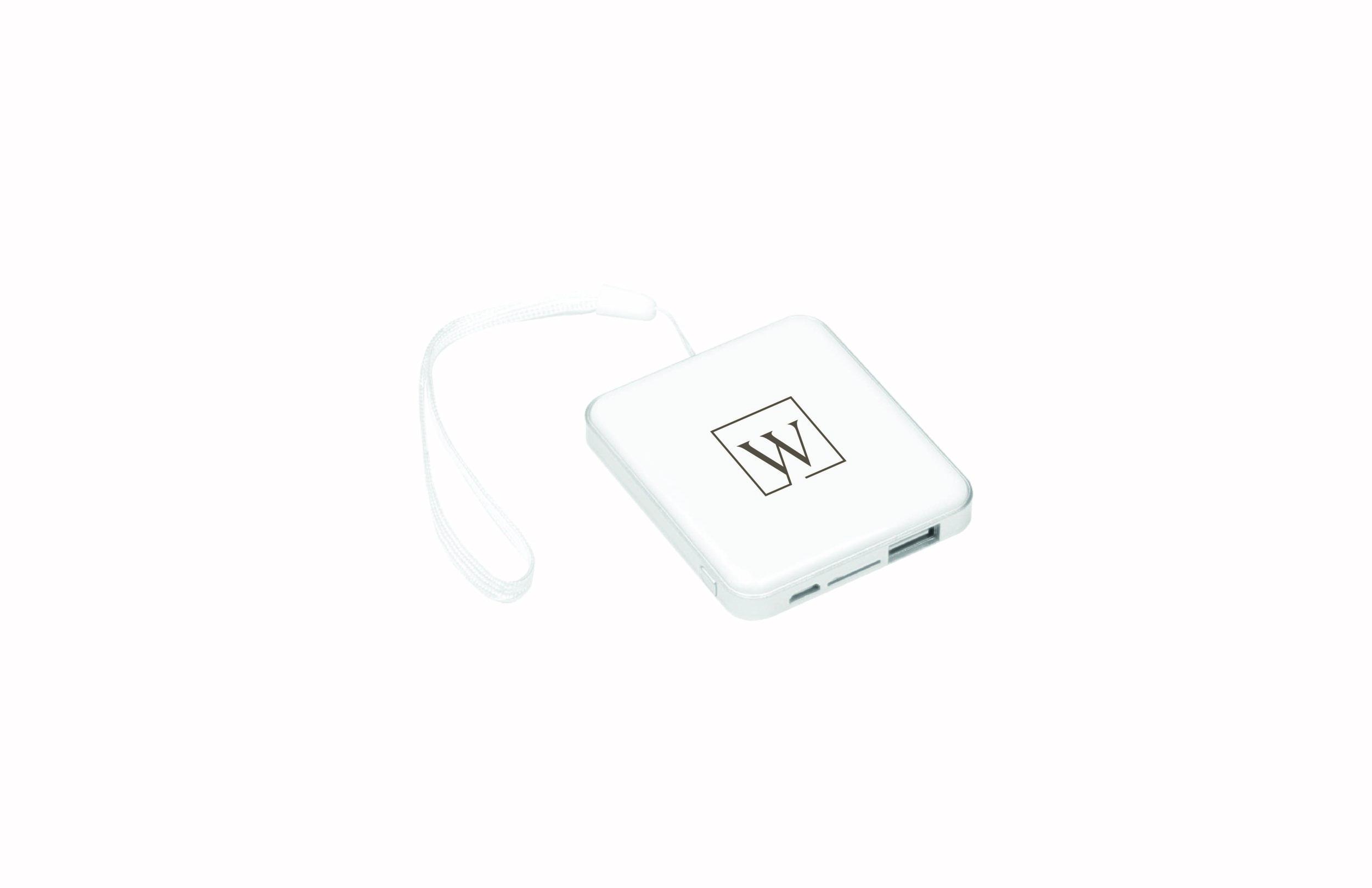 Portable Charger.jpg