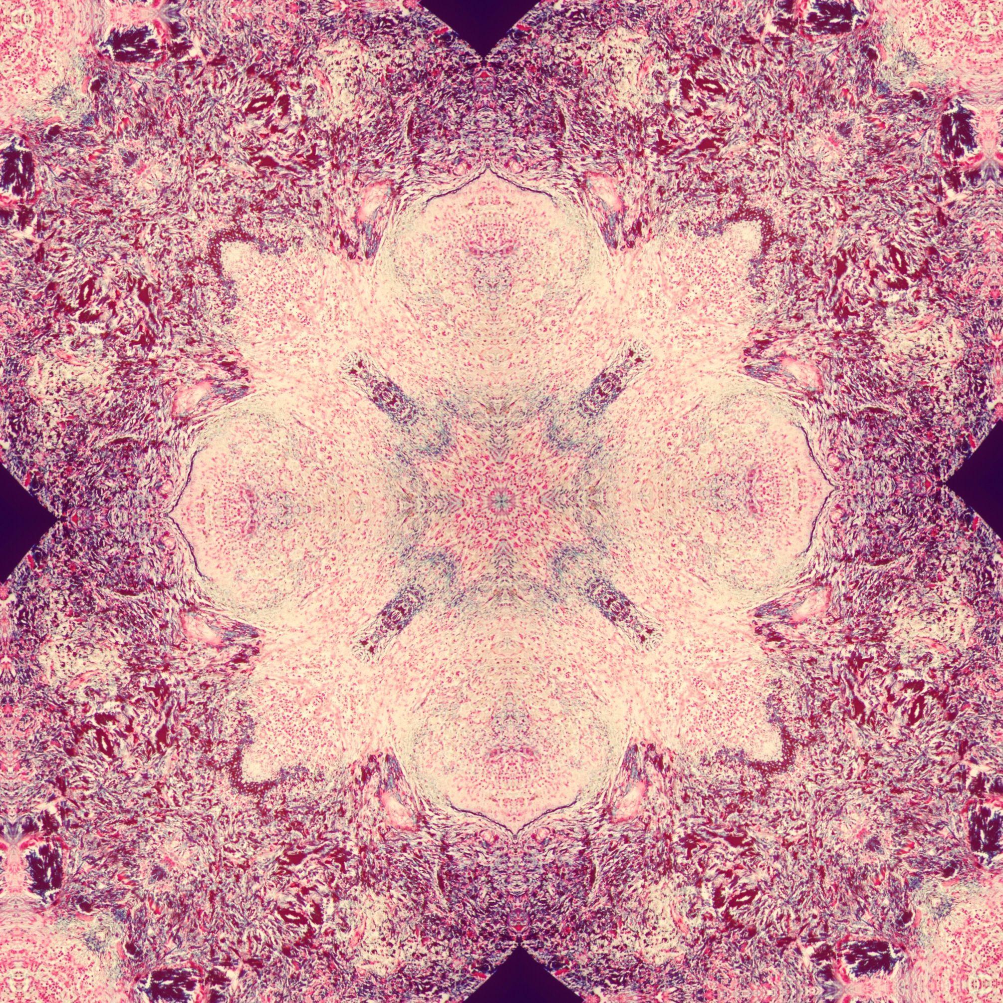 splenic tissue mandala 3.jpg