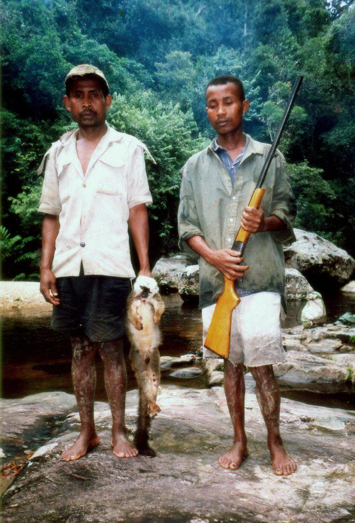 Lemur_poaching_004.jpg