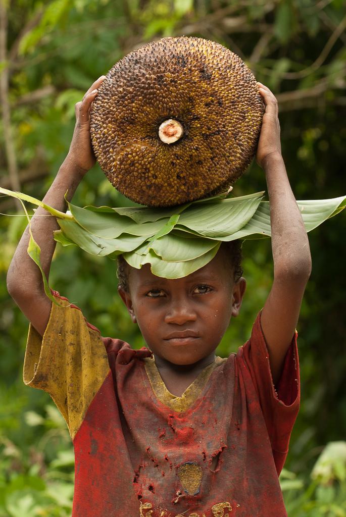 Food Transport In Madagascar