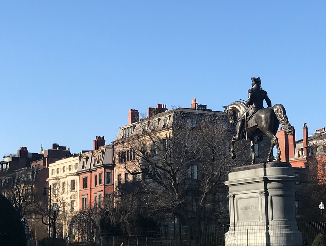 View of Beacon Hill from Boston's Public Garden, LGD Team (Crystina Castiglione Photography).