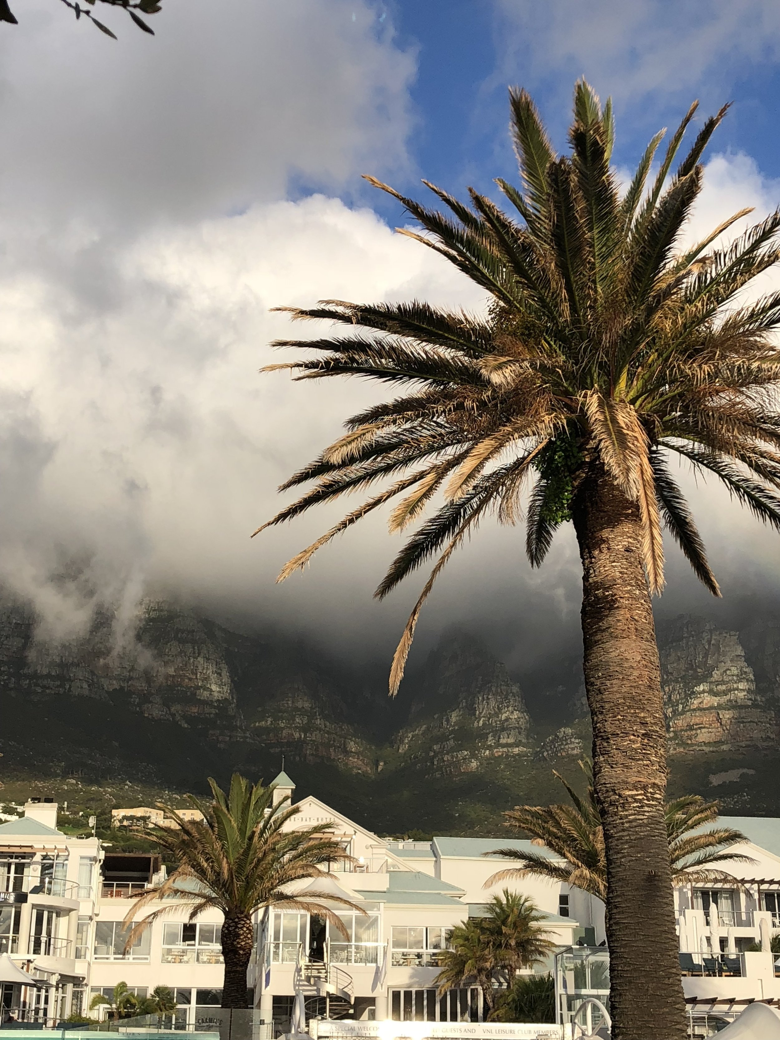 camps bay_ south africa
