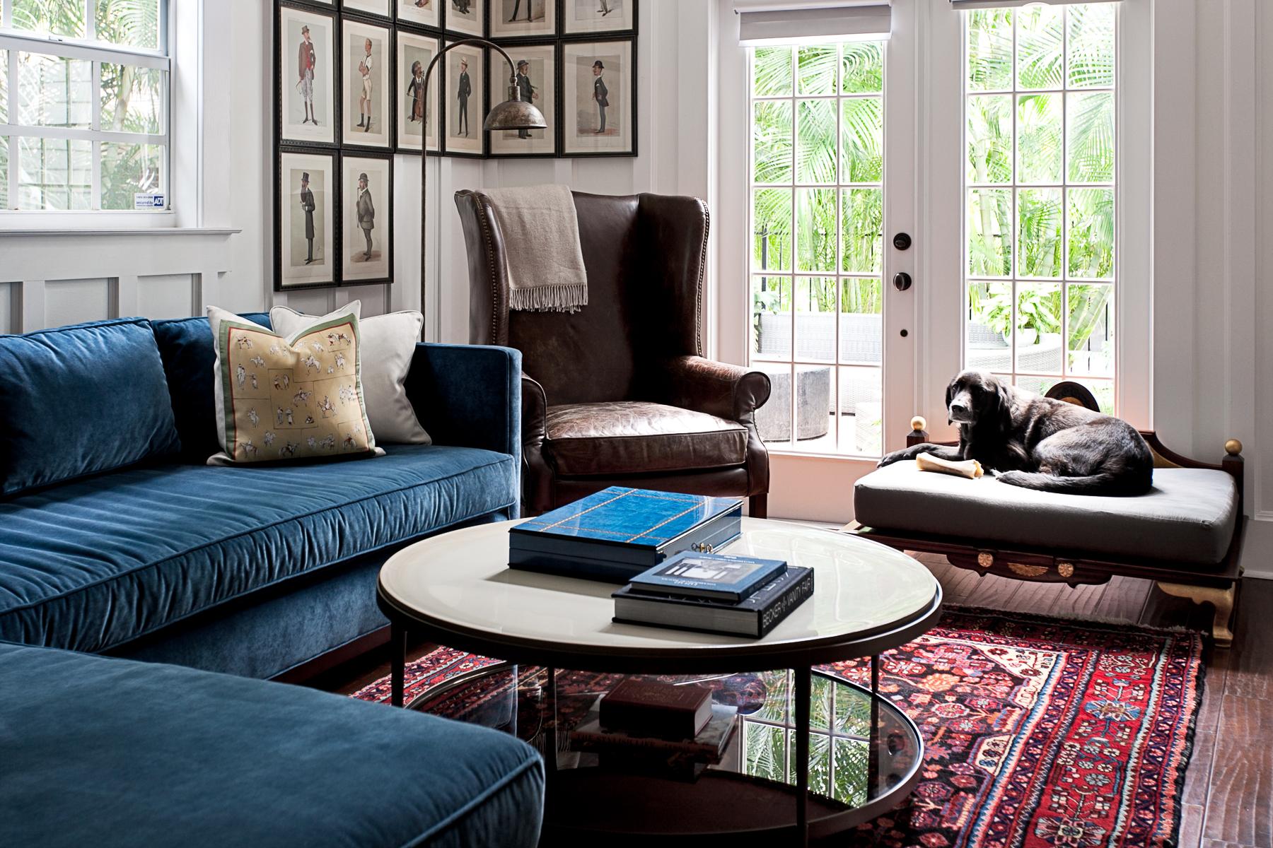 LISA GILMORE DESIGN | PET FRIENDLY LIVING