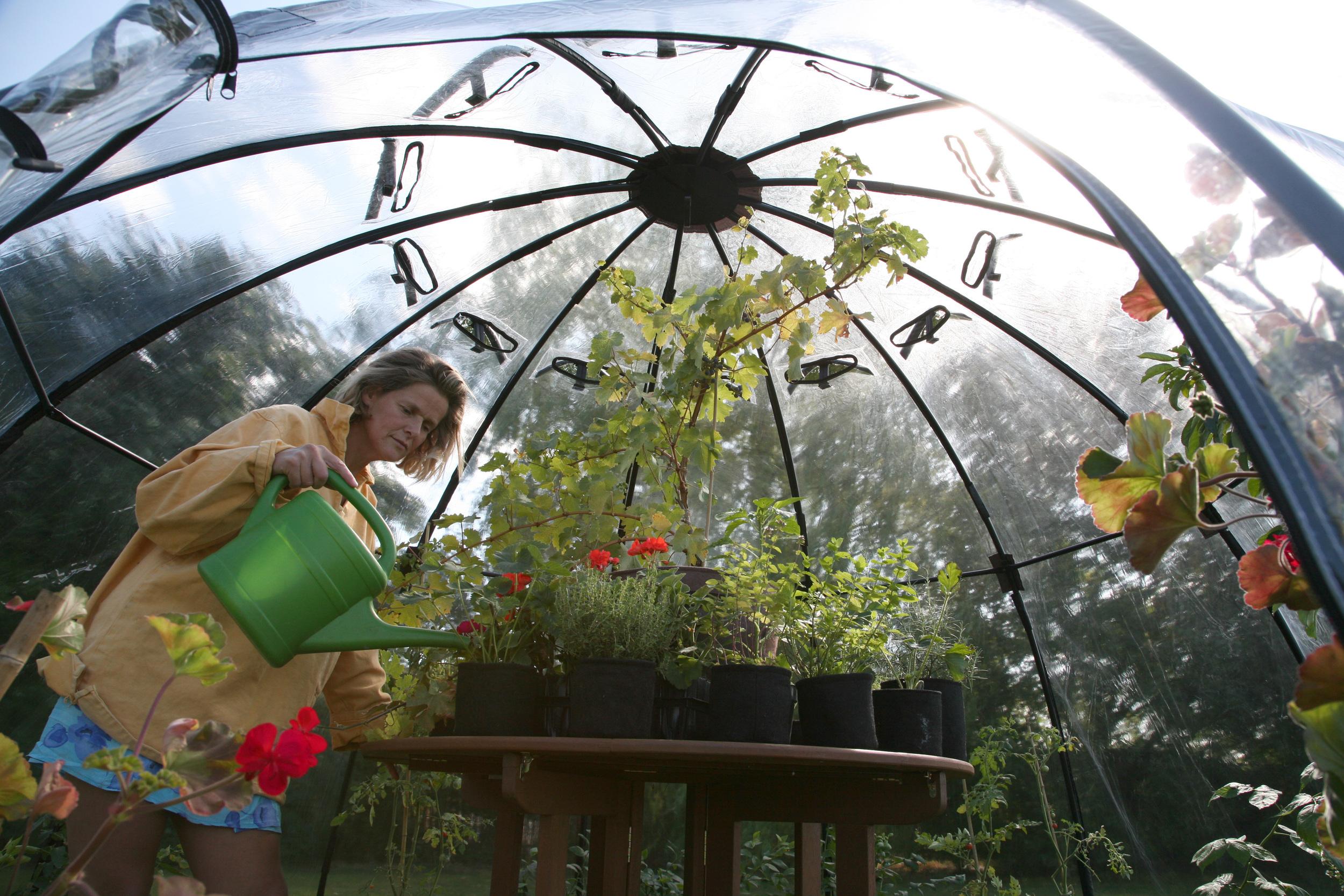 Tierra Garden Haxnicks Sunbubble.jpg
