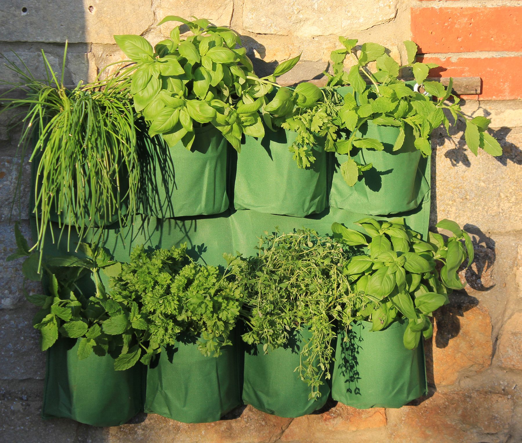 Haxnicks Herb Wall Planter.jpg