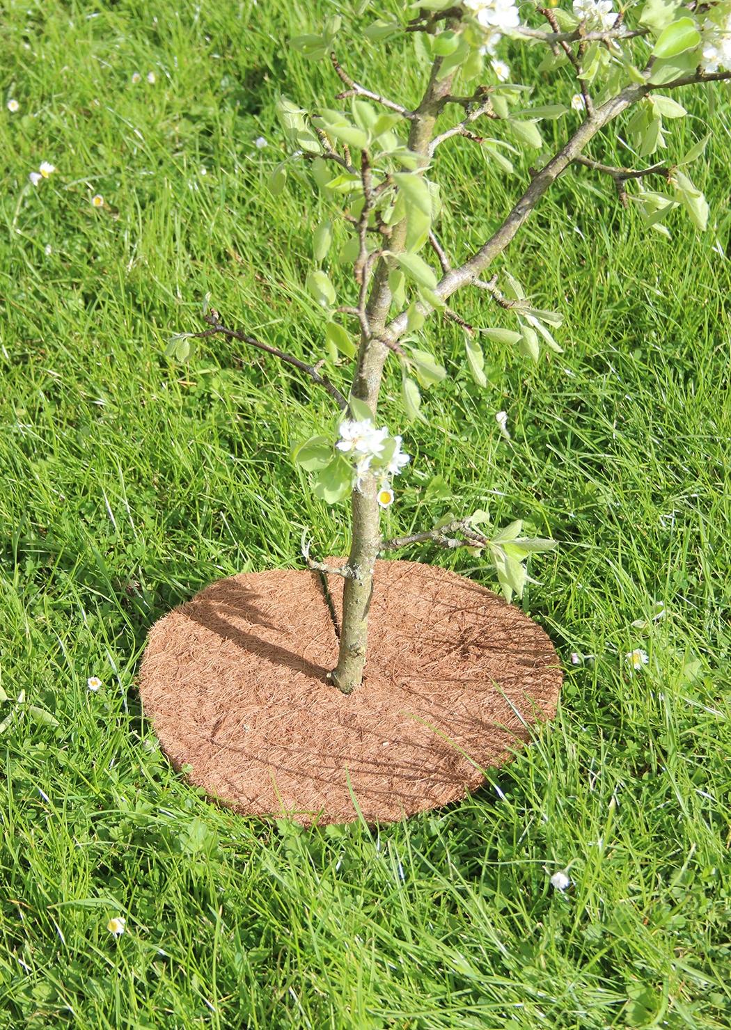50-9510 Tierra Garden Haxnicks 12 in Tree Mat In Use WEB.jpg