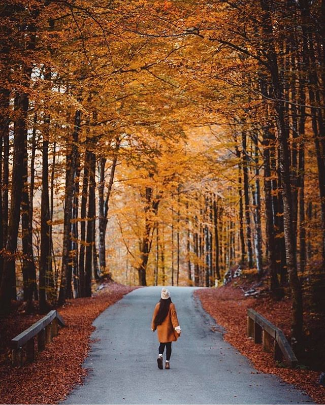 It's that time of year again! Wishing all of you great things as we leave one season behind and enter the next. Happy Fall! 🍂 ______ Image via @alliemtaylor #Socality #ThisIsMyCommunity