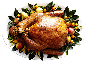 turkey small.jpg