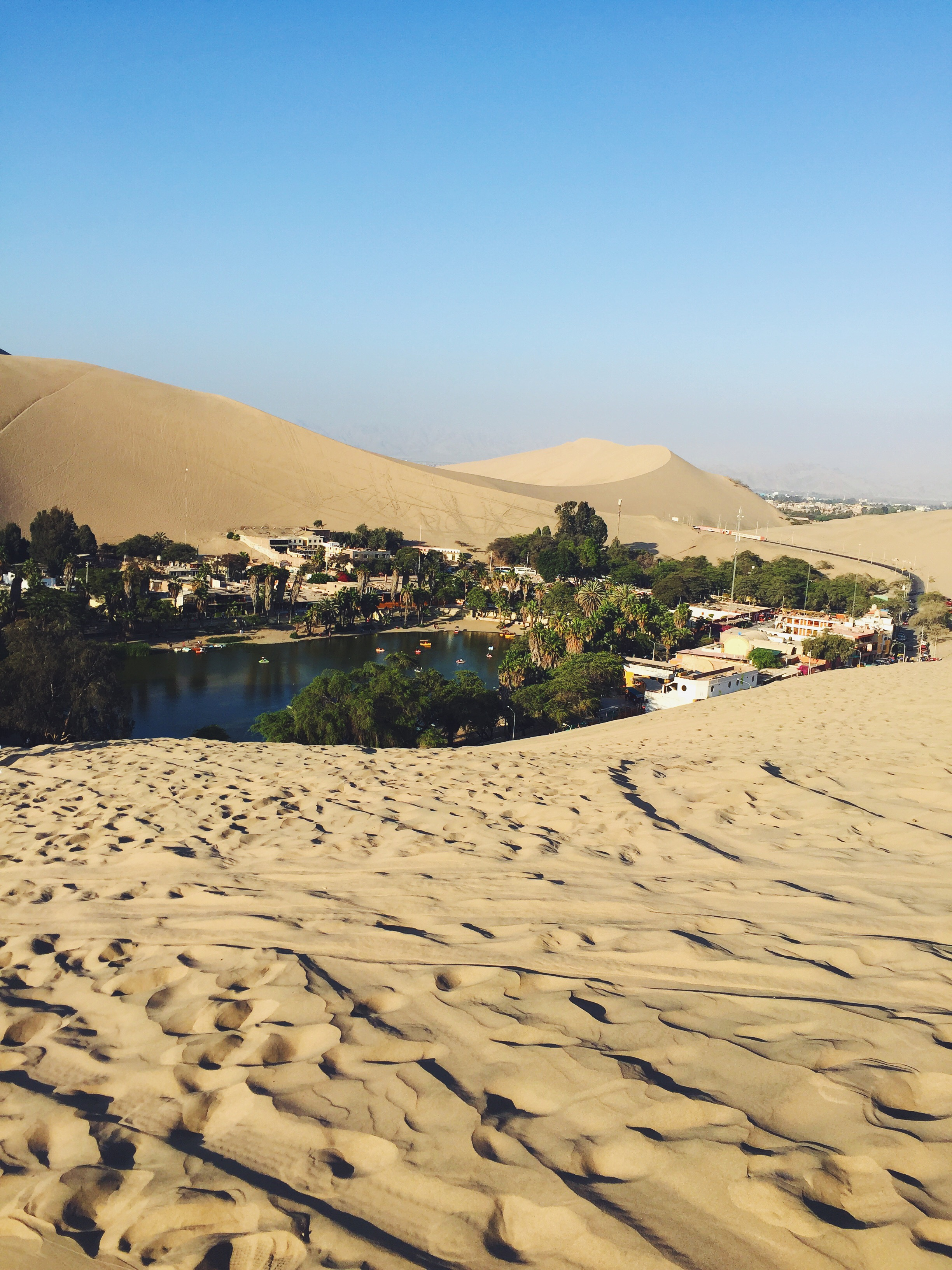 The view of the oasis during the dune buggy ride.