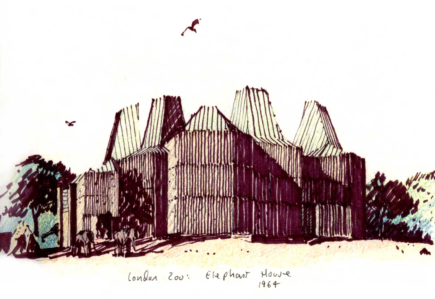 Elephant House, London Zoo.  Felt-tip pen and colored pencil.