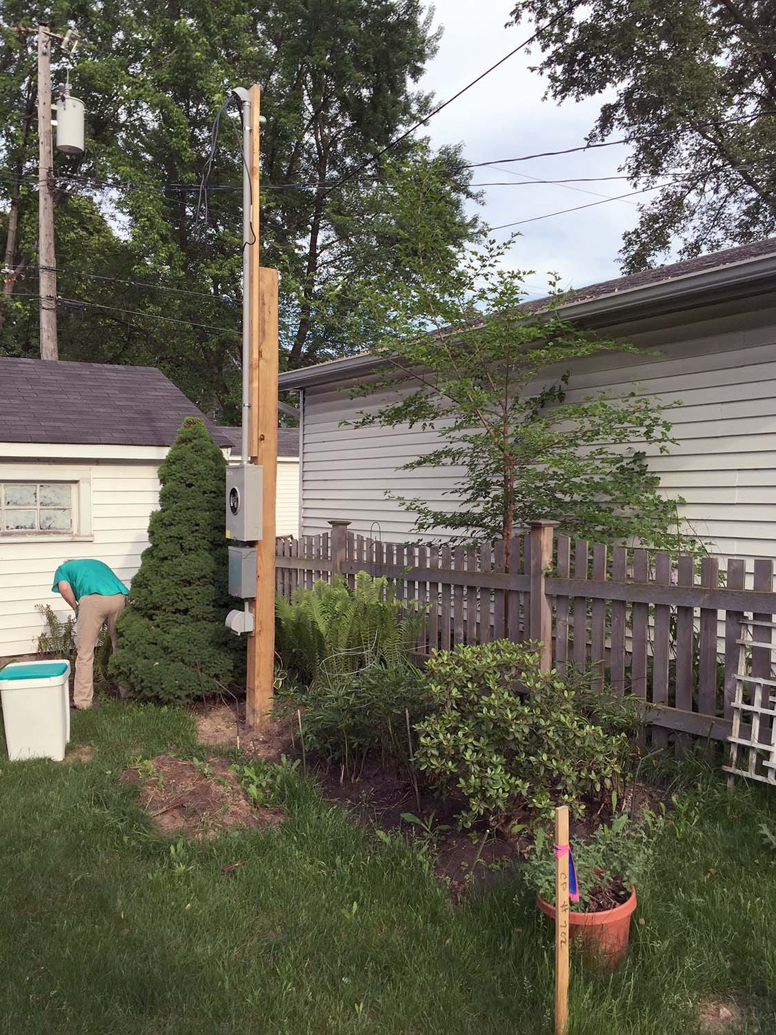 We kept the small conifer behind the pole, and transplanted the rest.  The fence was salvaged and is now part of the screened porch.