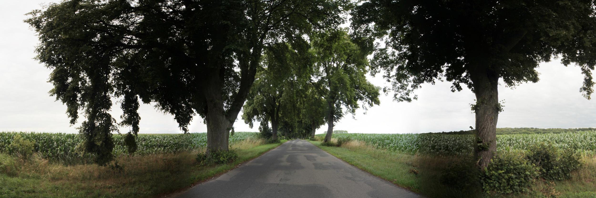 Eigentlich hübsche Landstraßen in Mecklenburg