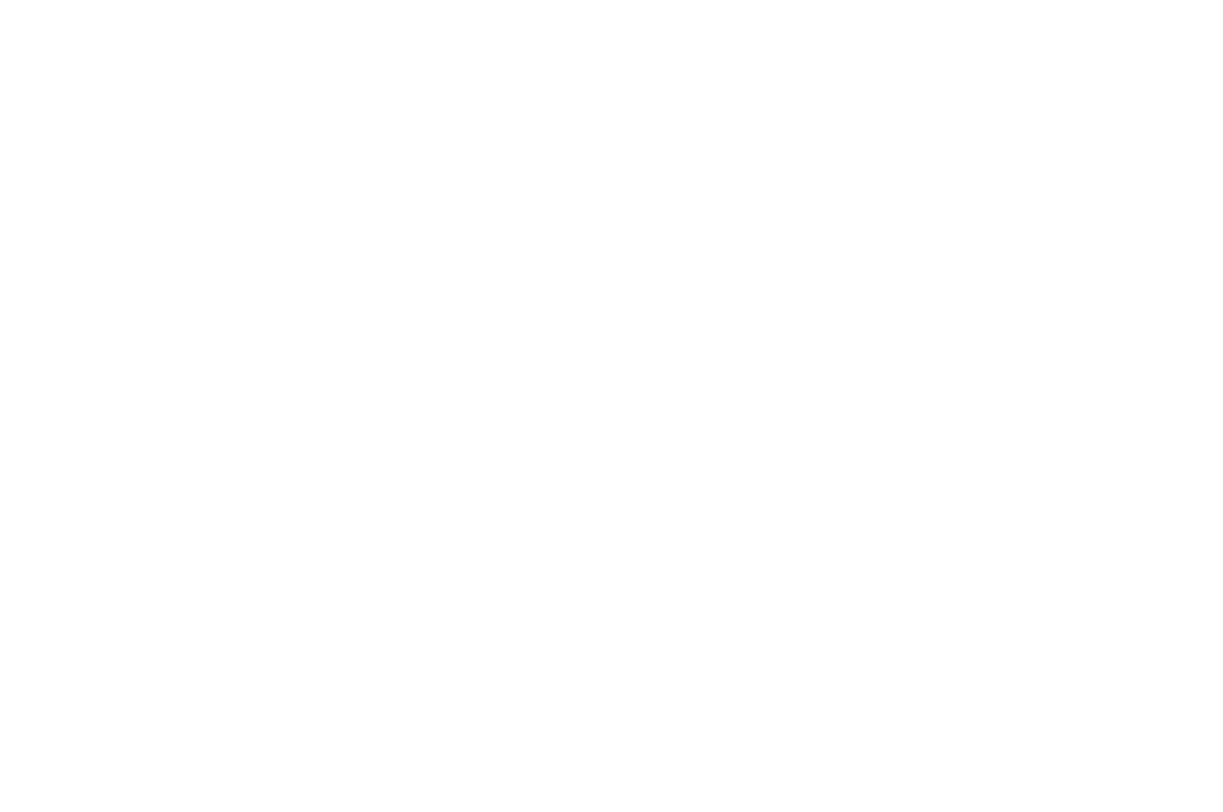 WHITE ON BLACK WINNER BEST ENSEMBLE - FEARnyc Film Festival - 2016.png