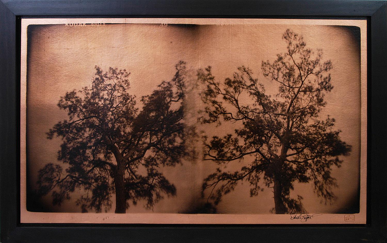 """Pines on Copper"" 24""x36"" FW15 $1200"
