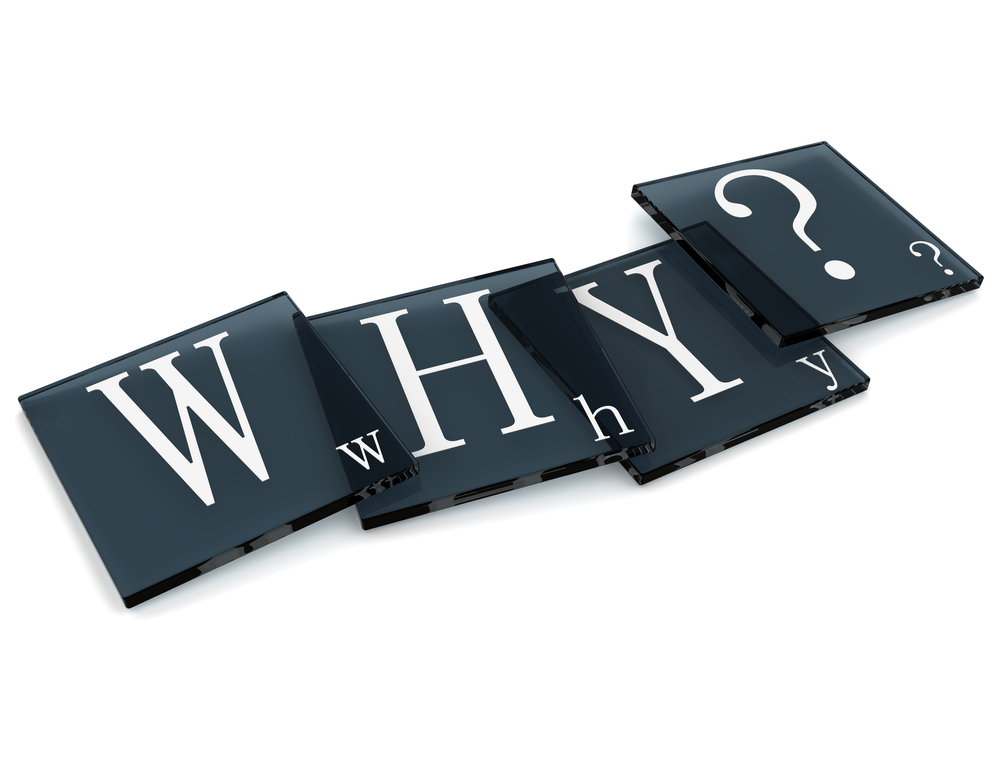 What can asking why do for you or your organization?