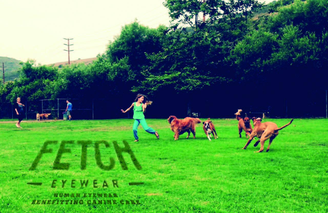 Web_FetchRedone_ToPrint_DogPark.jpg