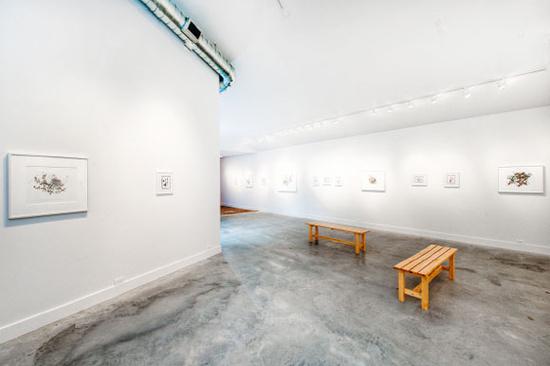 Gallery Pick: grayDUCK Gallery