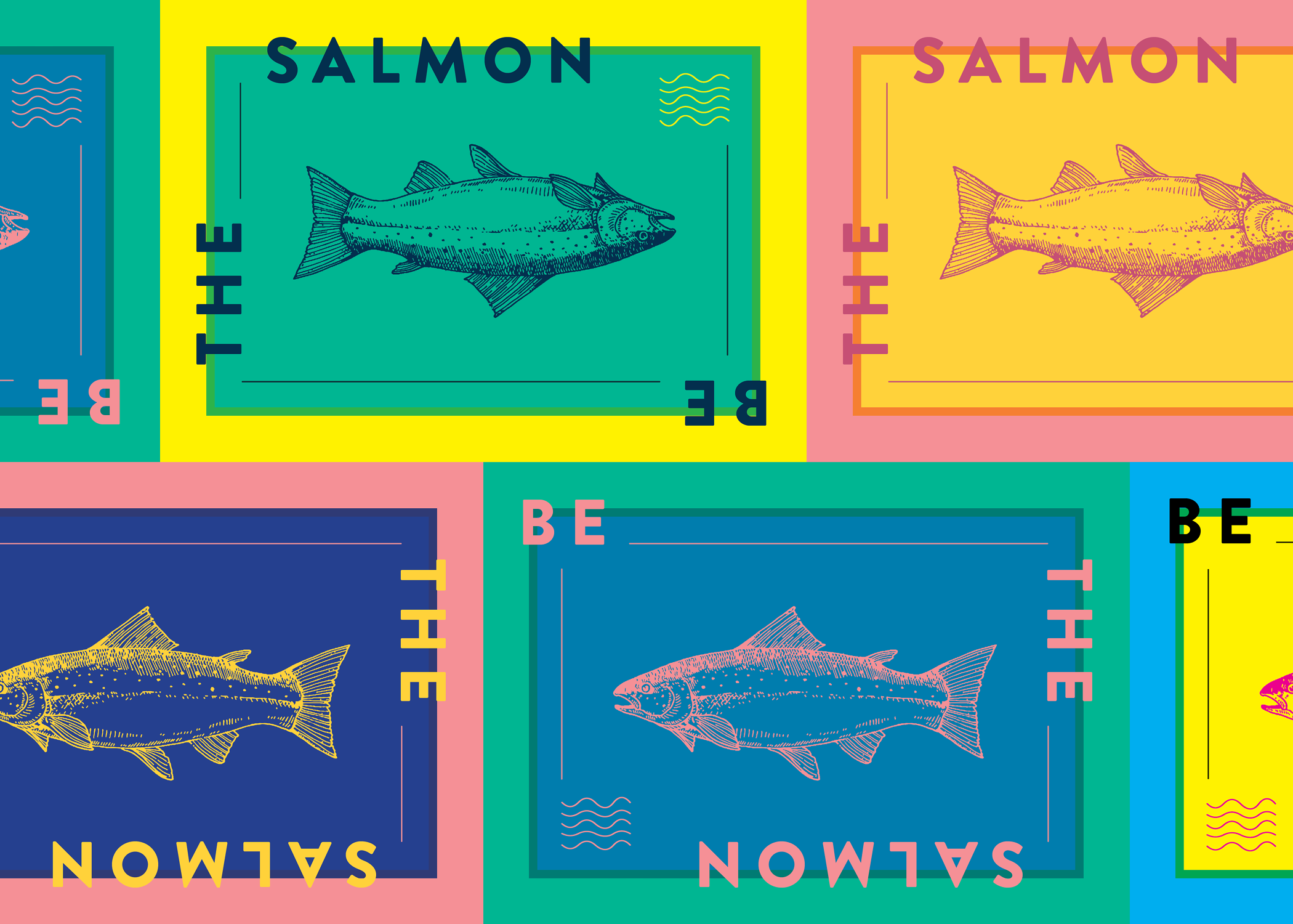 SALMON_ALL.png