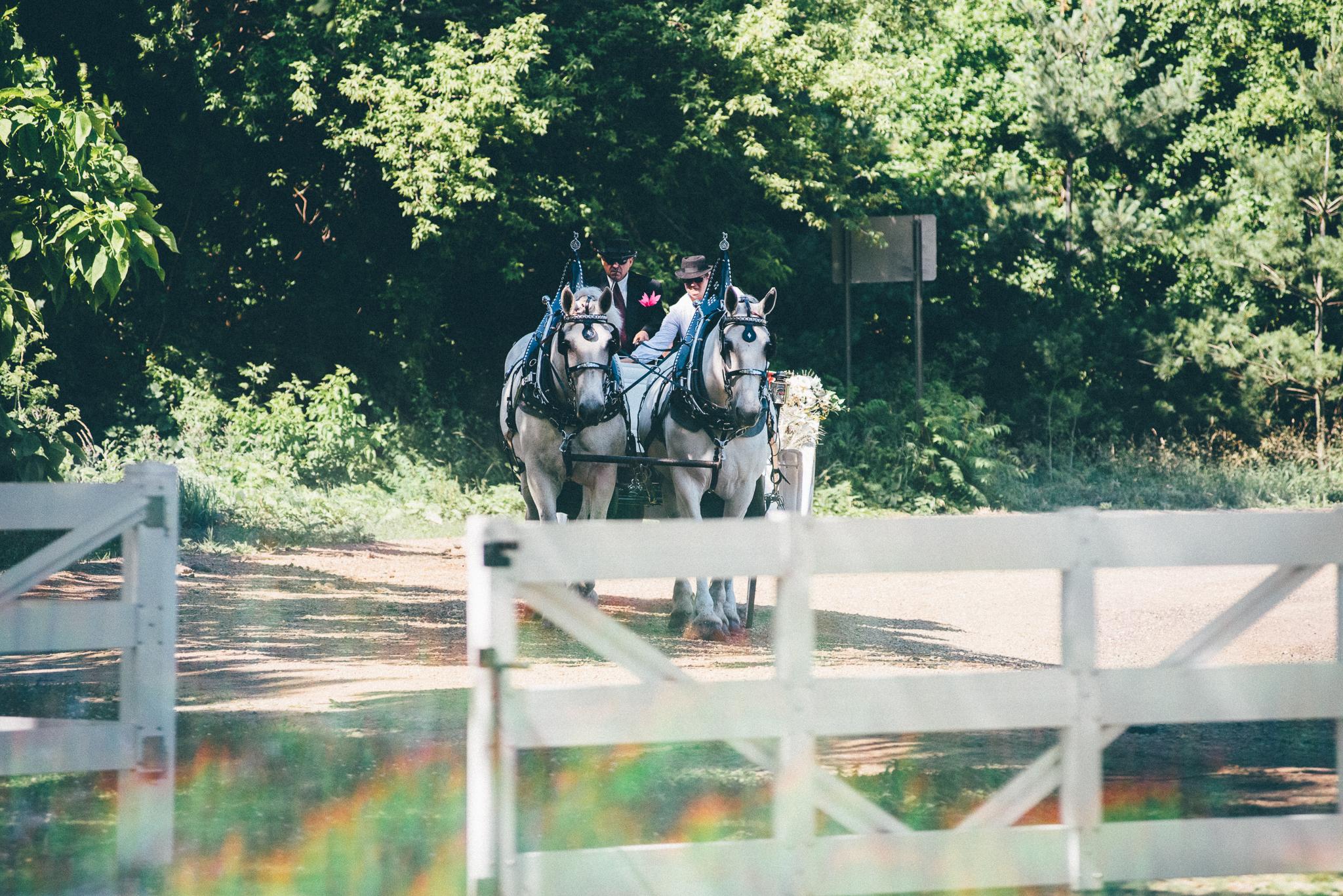 Elegant Michigan Barn Venue   Miss Lyss Photography   www.misslyssphotography.com