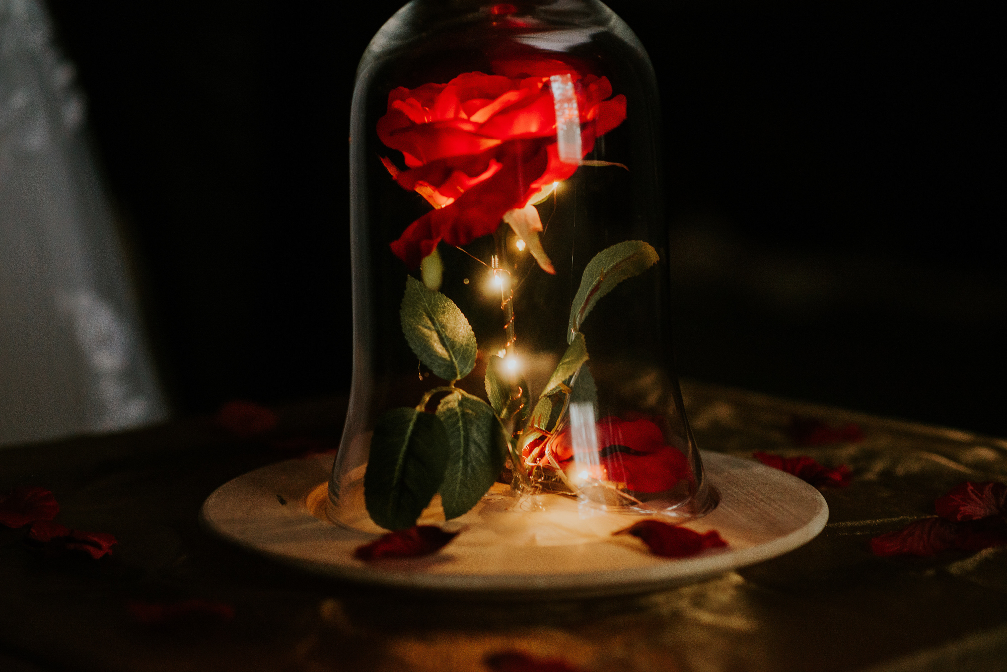 Beauty and the Beast Themed Wedding | Miss Lyss Photography | www.misslyssphotography.com