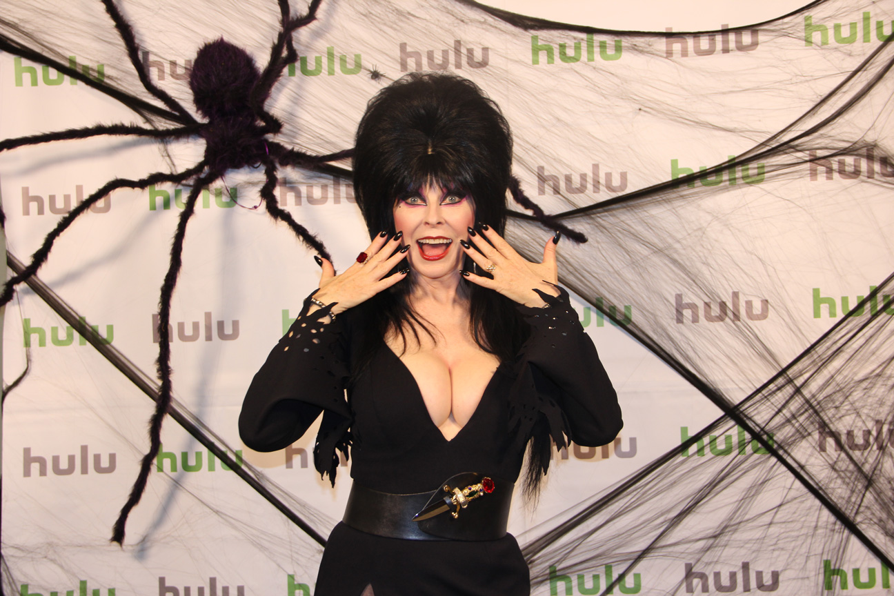 I managed and took all event photos of Elvira with hulugans across the organization.
