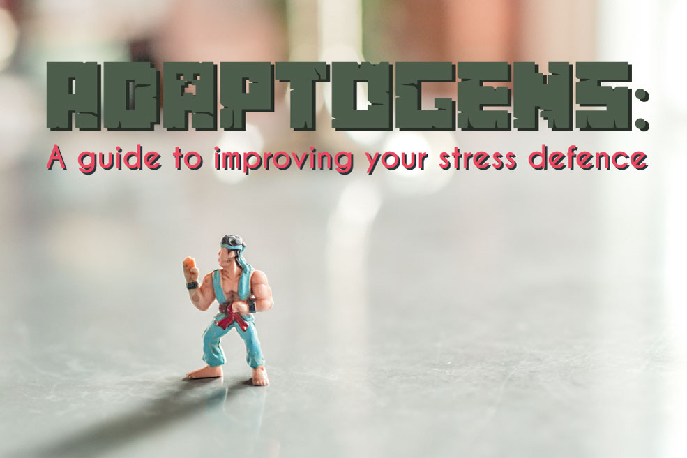 Adaptogens and stress defence
