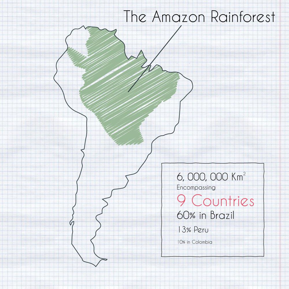 The Amazon Rainforest Size